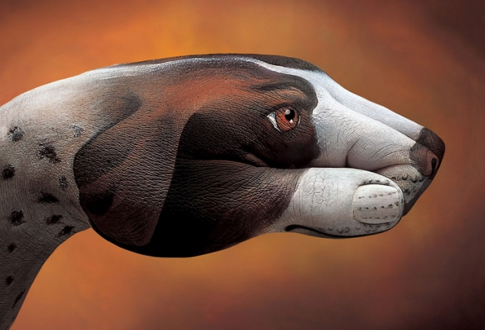Dłonie jak zwierzęta - Guido Daniele - sztuka, body painting