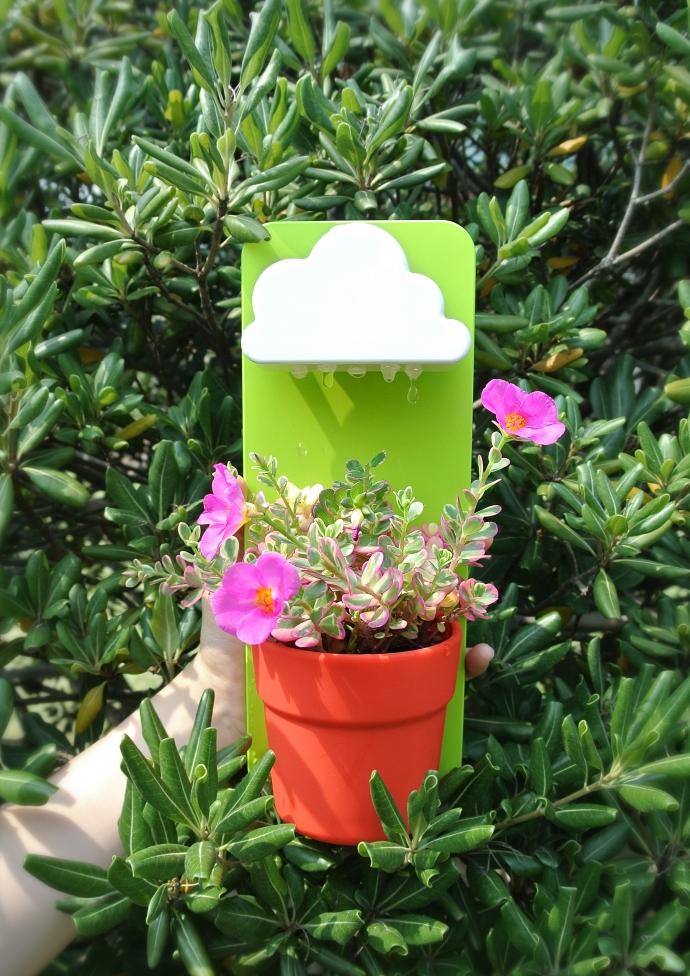 Rainy Pot, roślinka pod chmurką - design, doniczka